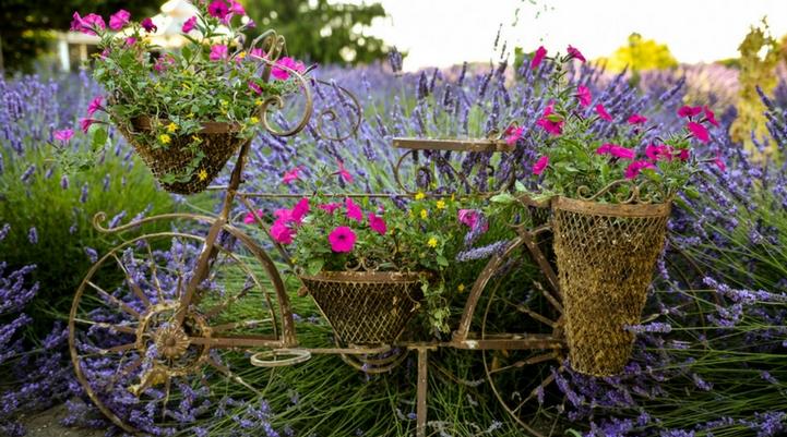 garden centre insurance